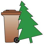 Tannenbaum Wegwerfen.Abholung Weihnachtsbäume Stadtbildpflege